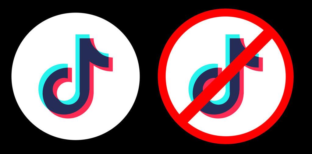 Will Instagram Reels Survive If Tiktok Isn't Banned ...